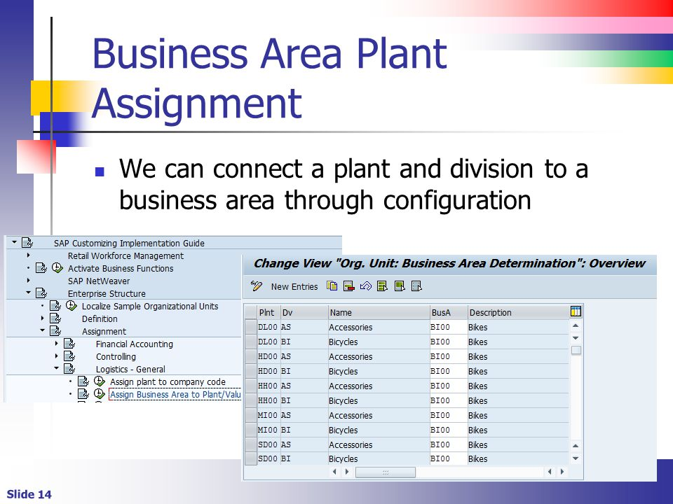 Business Area Plant Assignment