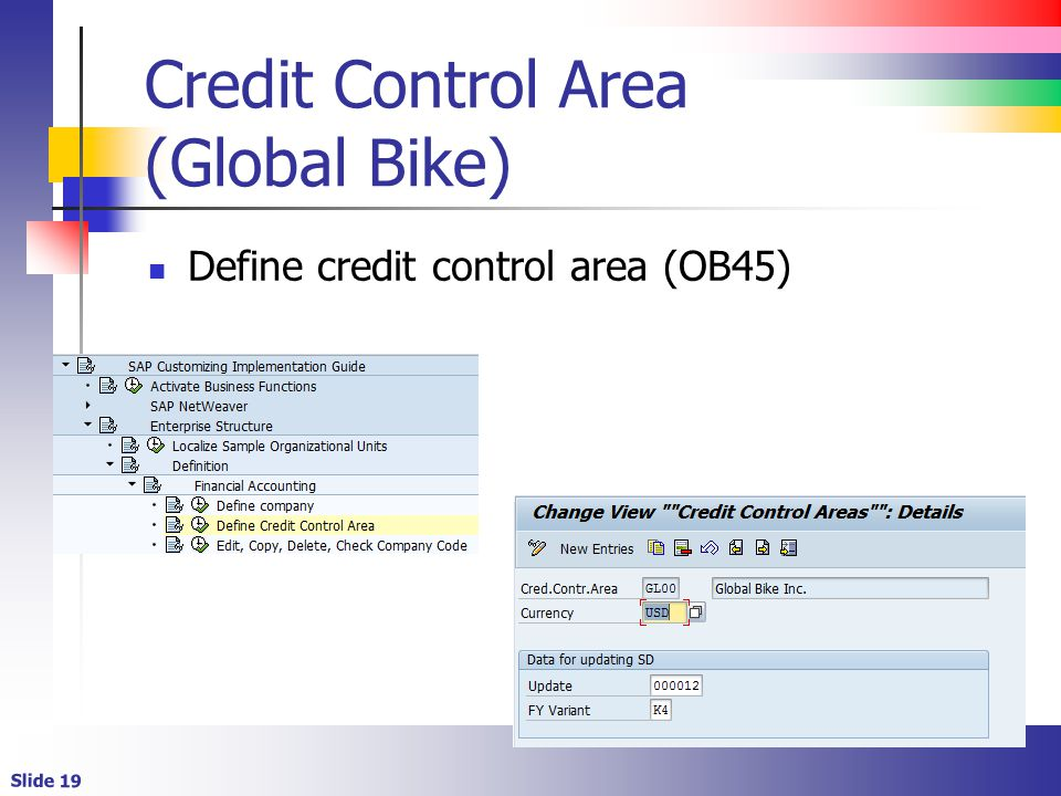 Credit Control Area (Global Bike)