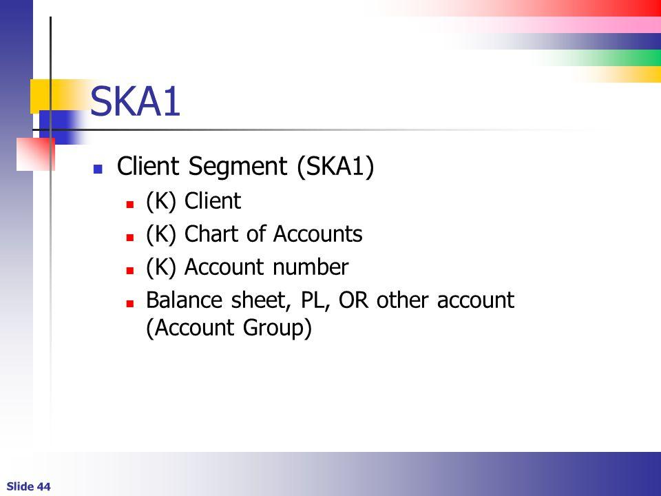 SKA1 Client Segment (SKA1) (K) Client (K) Chart of Accounts