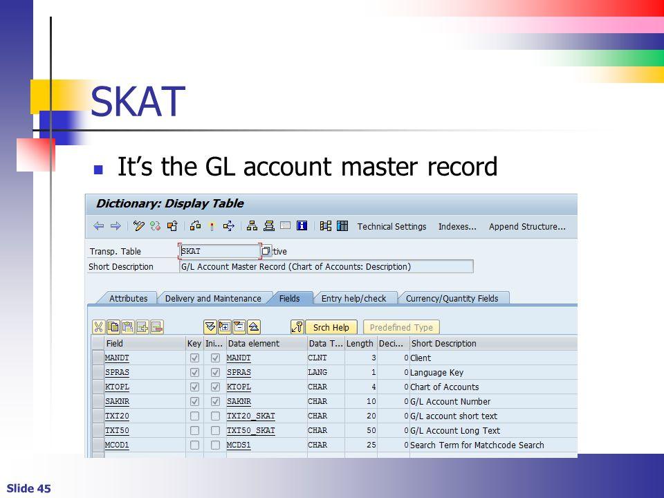SKAT It's the GL account master record