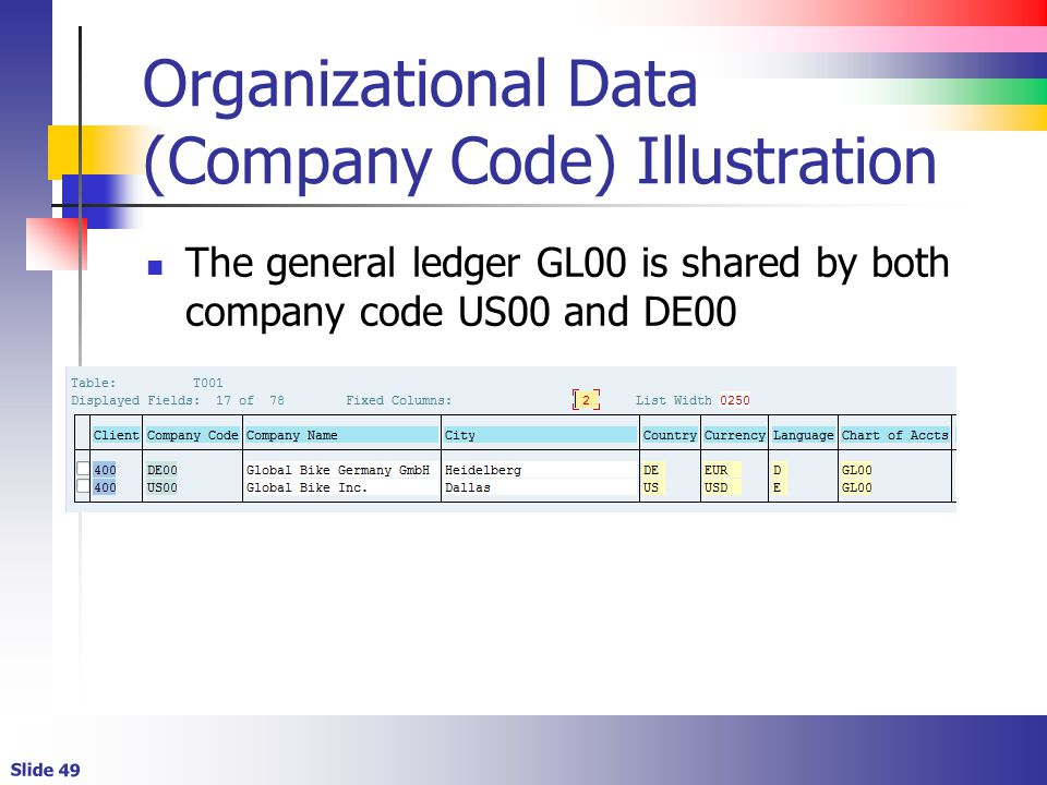 Organizational Data (Company Code) Illustration