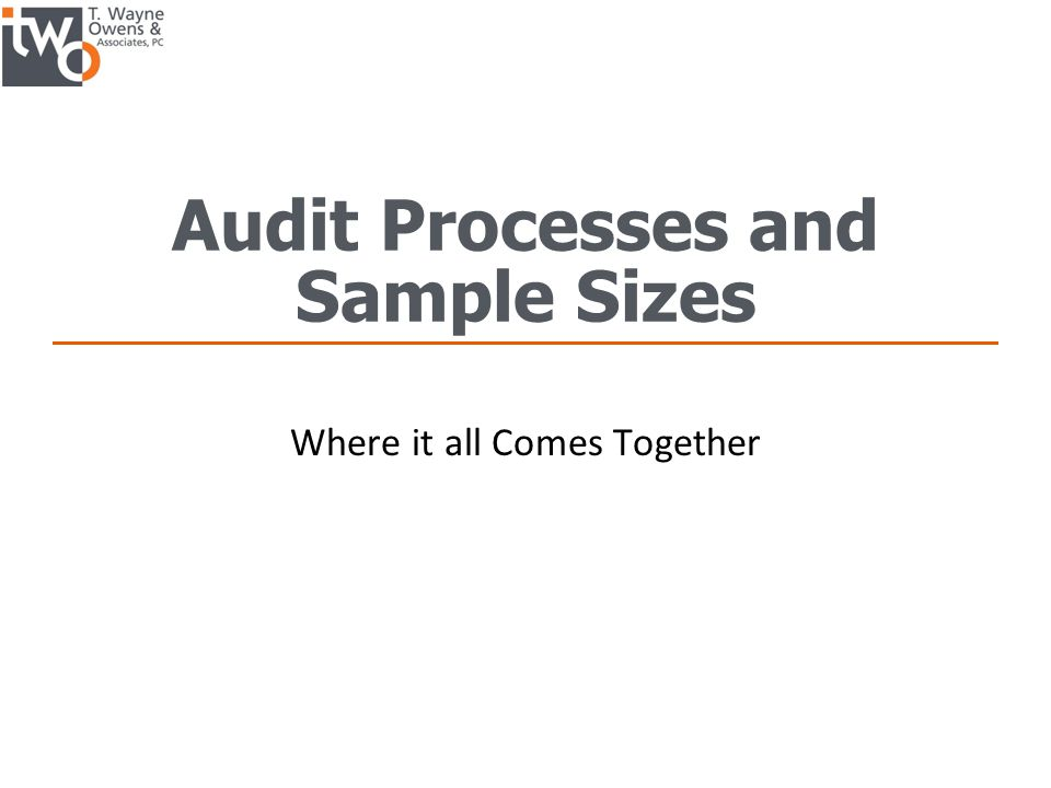 Audit Processes and Sample Sizes