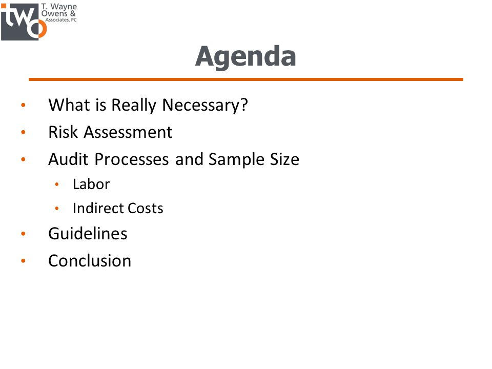 Agenda What is Really Necessary Risk Assessment