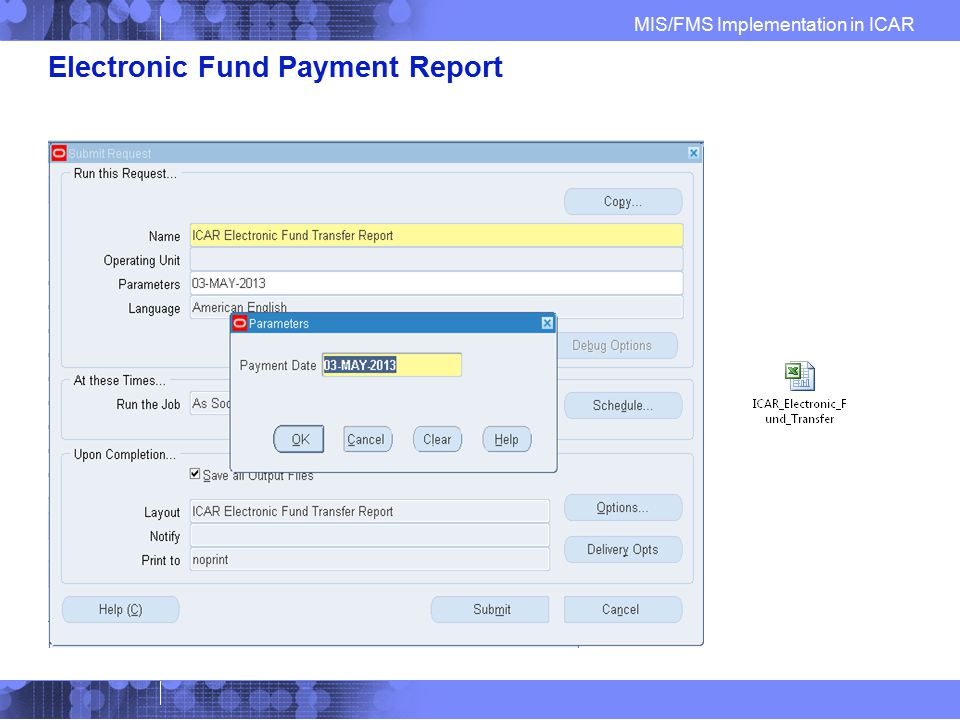 Electronic Fund Payment Report