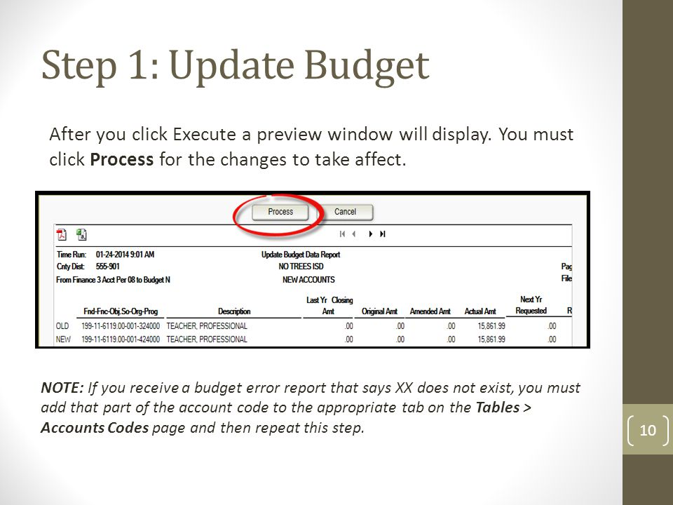 Step 1: Update Budget After you click Execute a preview window will display. You must click Process for the changes to take affect.