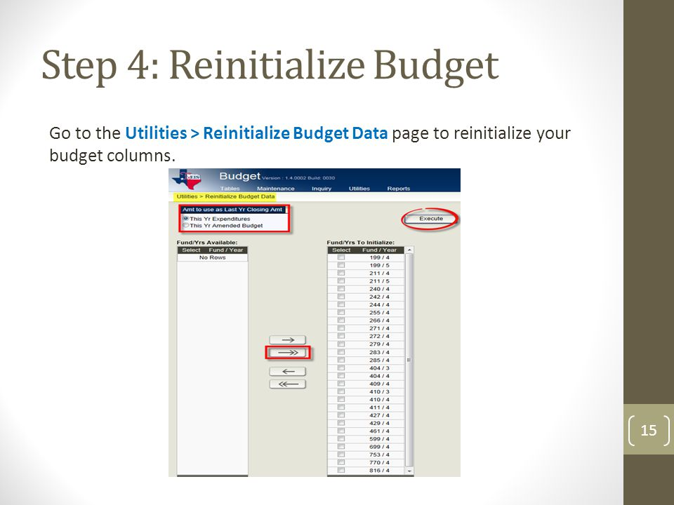 Step 4: Reinitialize Budget