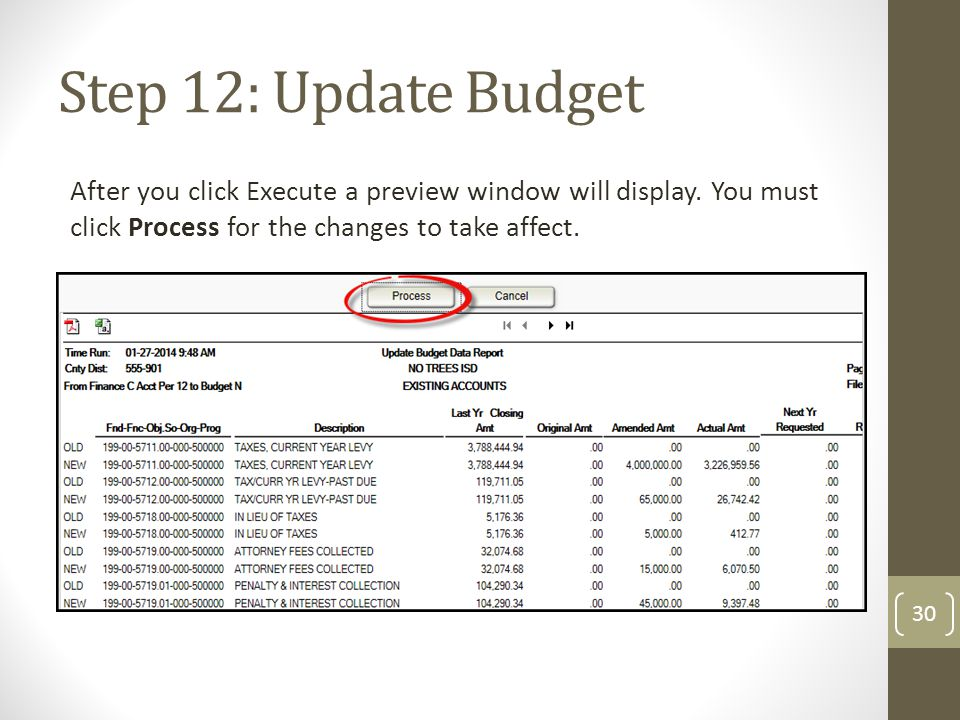 Step 12: Update Budget After you click Execute a preview window will display. You must click Process for the changes to take affect.