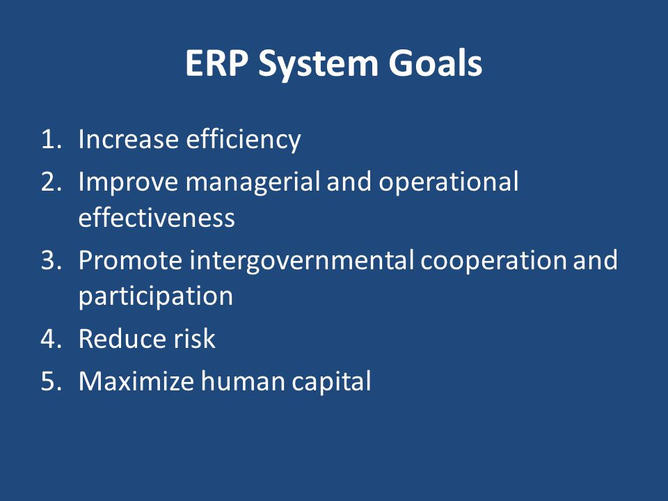 ERP System Goals Increase efficiency