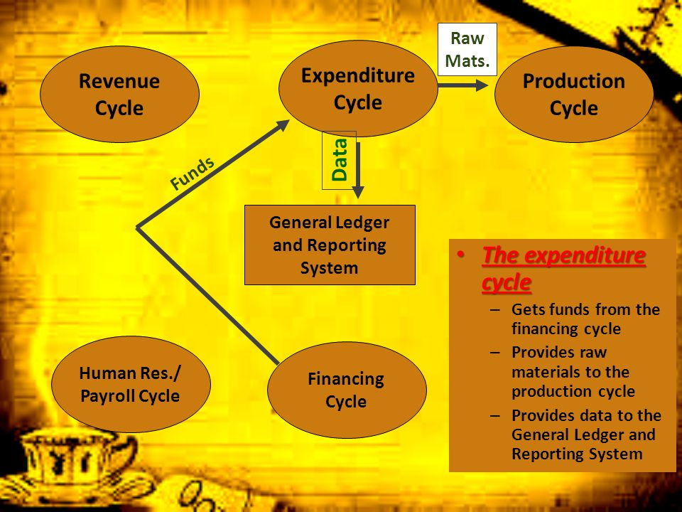 The expenditure cycle Expenditure Cycle Revenue Cycle Production Cycle