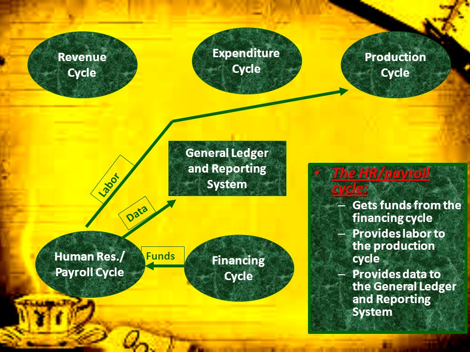 The HR/payroll cycle: Expenditure Cycle Revenue Cycle Production Cycle