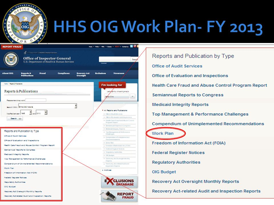HHS OIG Work Plan- FY 2013