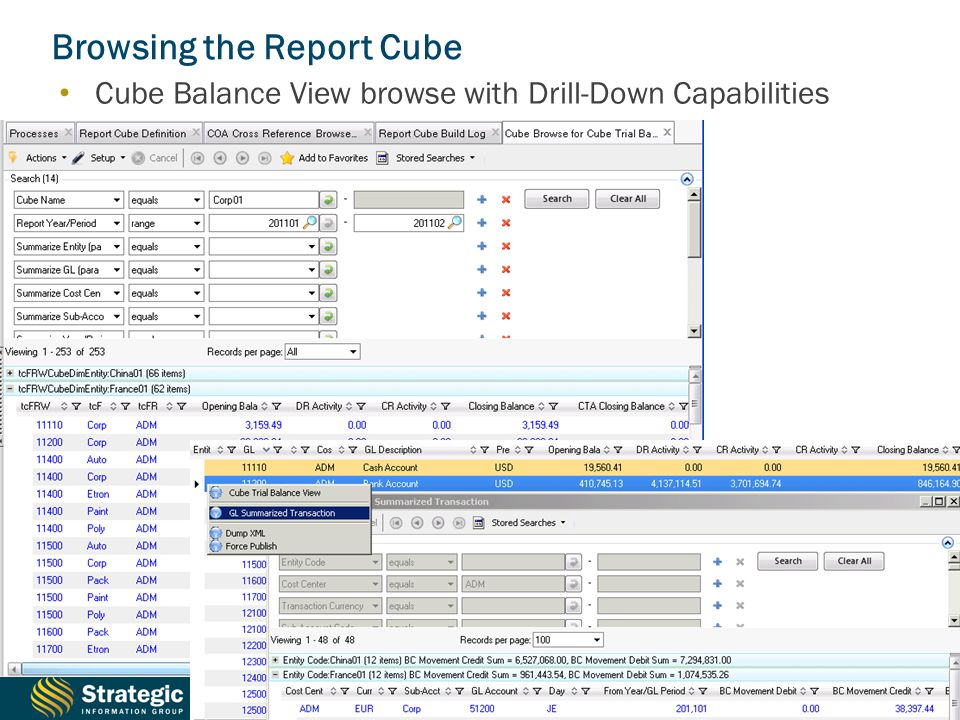 Browsing the Report Cube