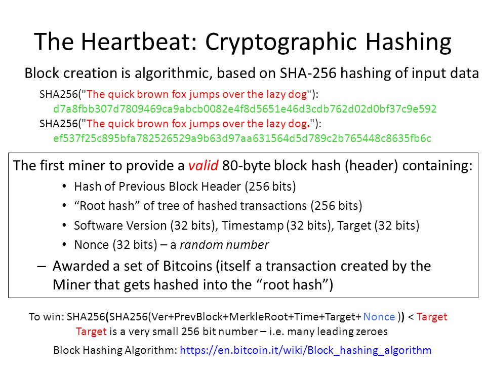 The Heartbeat: Cryptographic Hashing