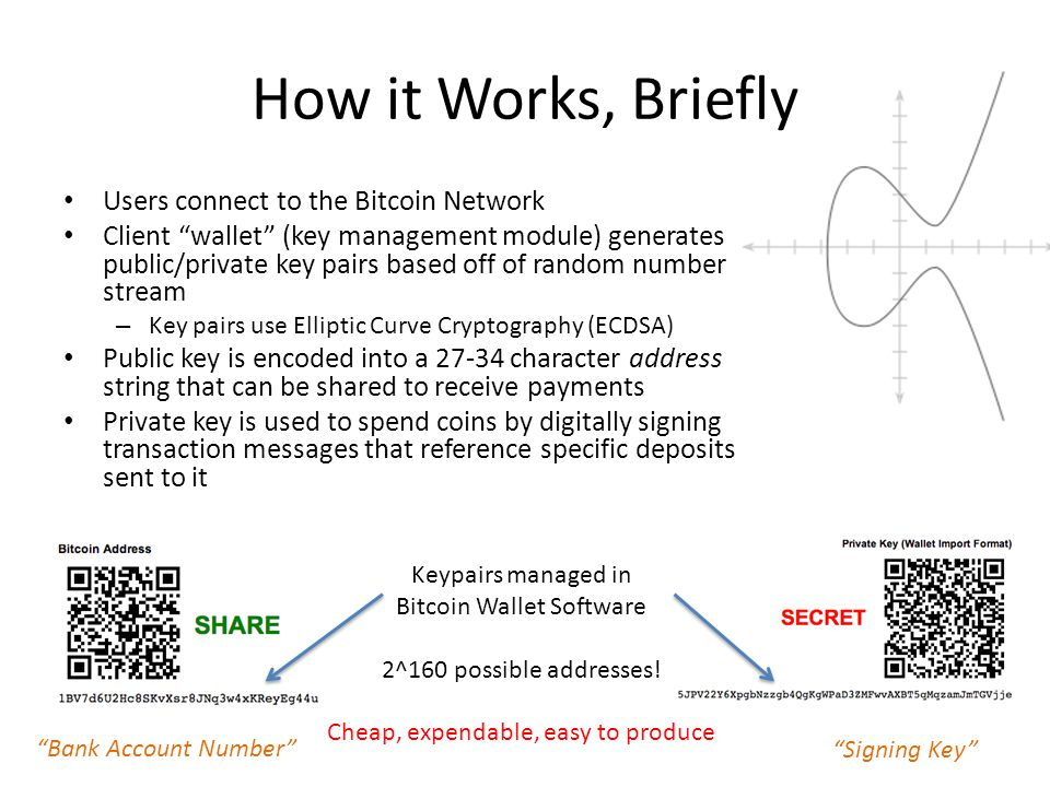 How it Works, Briefly Users connect to the Bitcoin Network