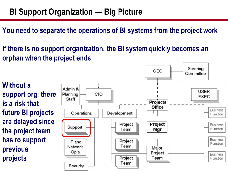 BI Support Organization — Big Picture