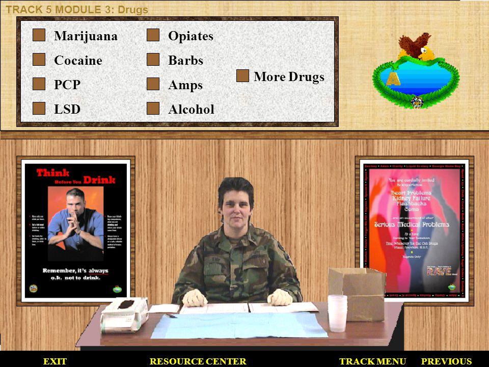 Marijuana Cocaine PCP LSD Opiates Barbs Amps Alcohol More Drugs