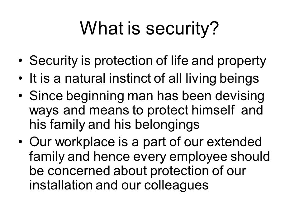 What is security Security is protection of life and property
