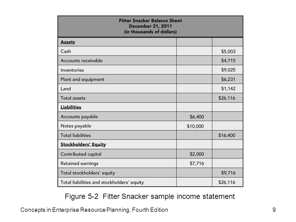 Figure 5-2 Fitter Snacker sample income statement