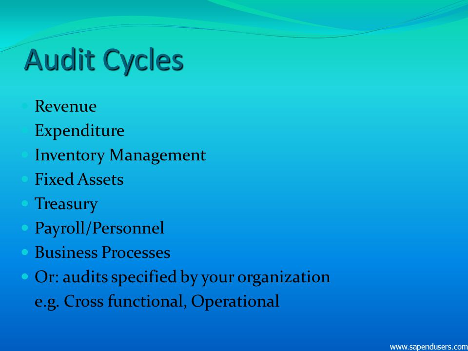Audit Cycles Revenue Expenditure Inventory Management Fixed Assets