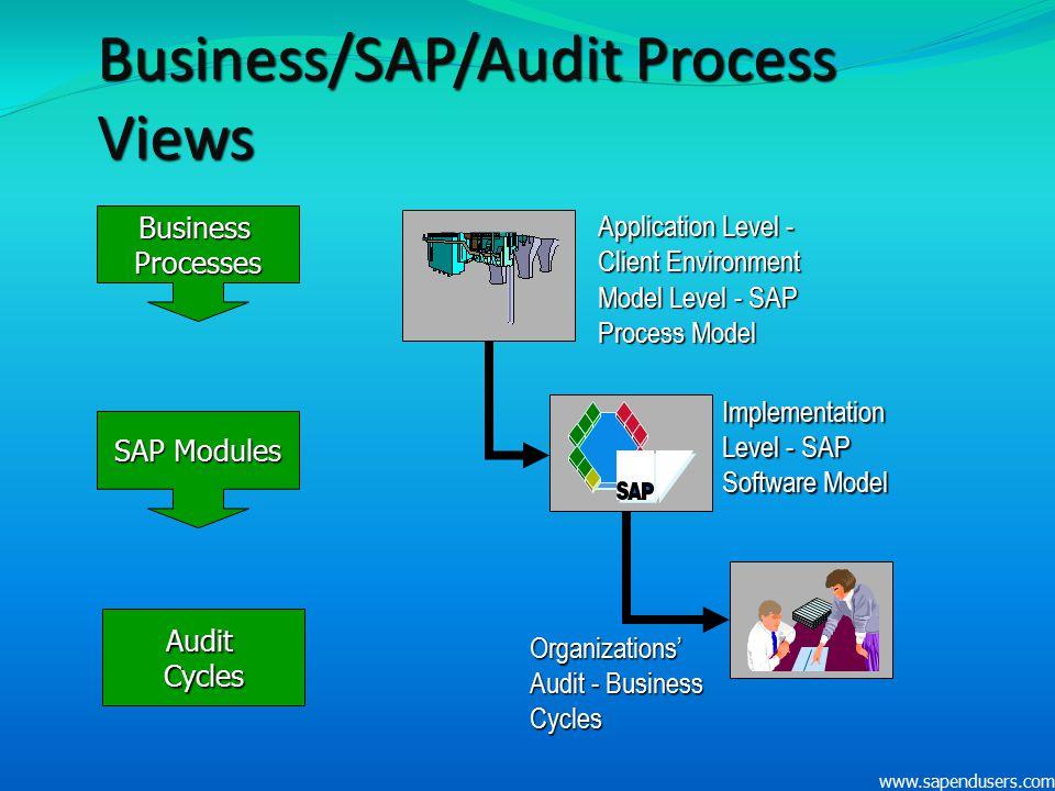 Business/SAP/Audit Process Views