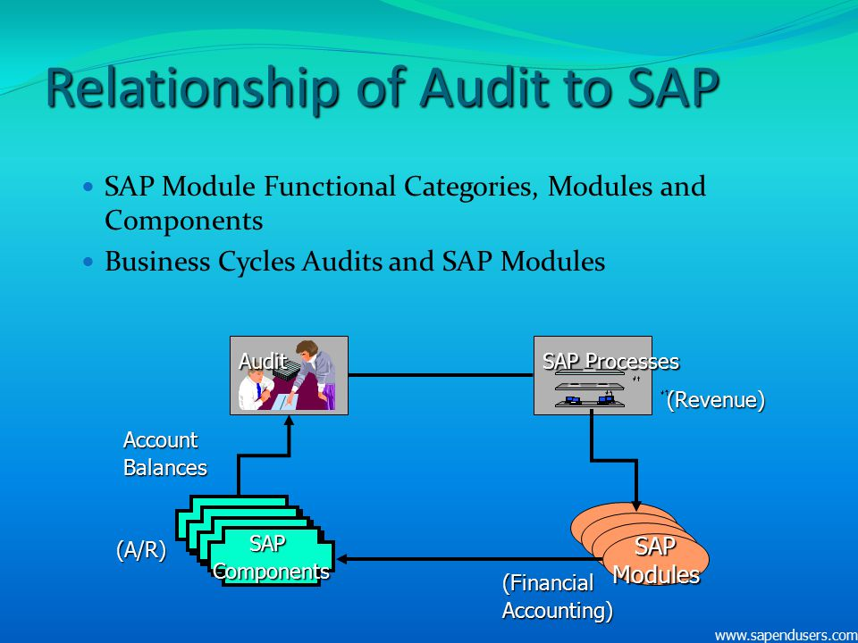Relationship of Audit to SAP