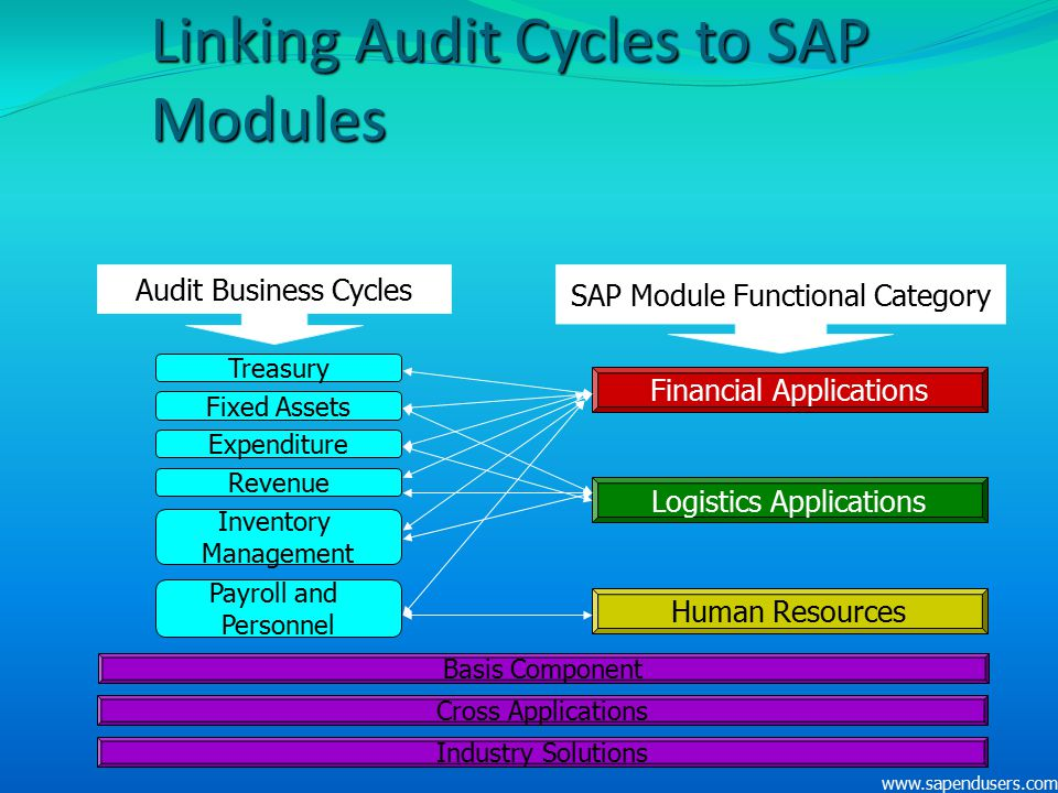 Linking Audit Cycles to SAP Modules