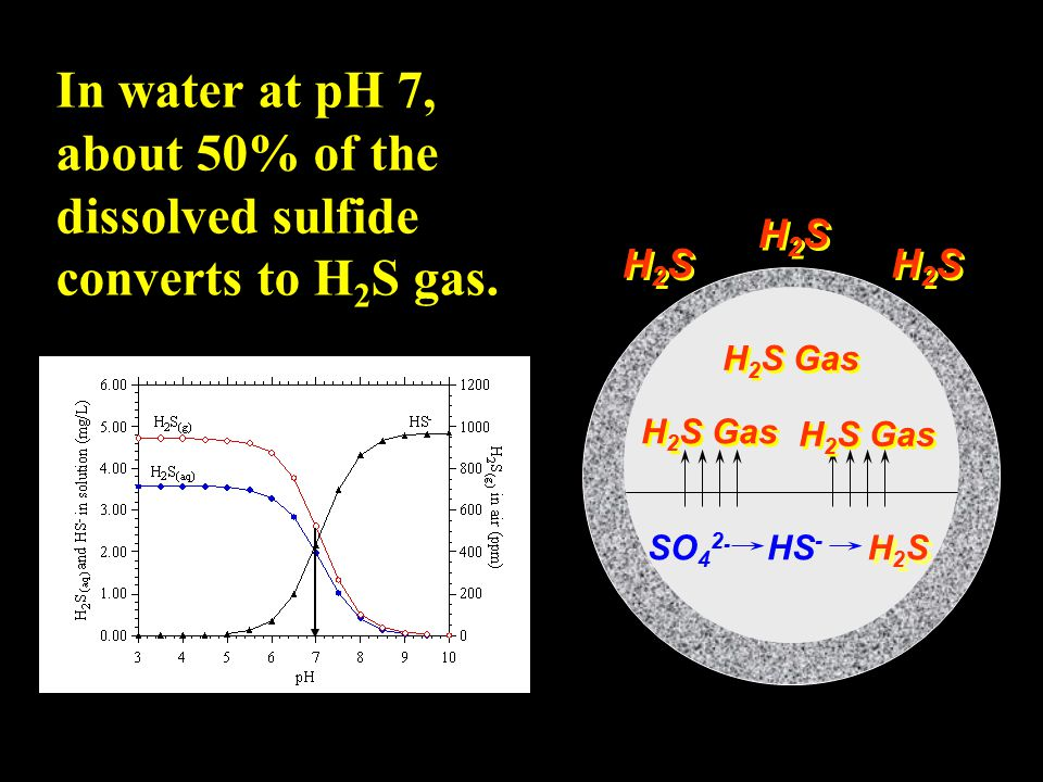 In water at pH 7, about 50% of the dissolved sulfide converts to H2S gas.