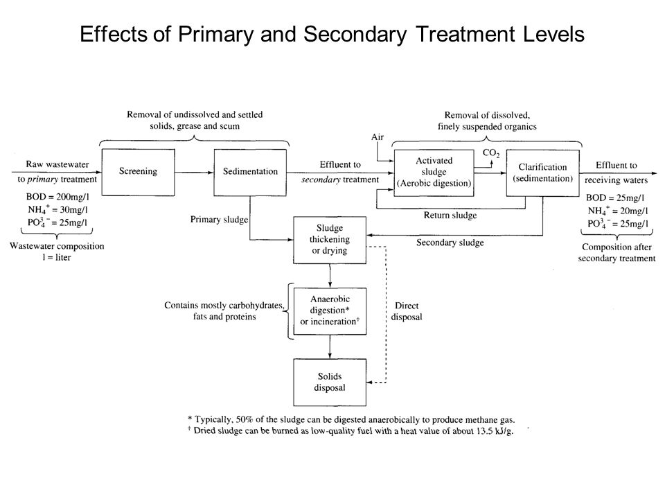 Effects of Primary and Secondary Treatment Levels