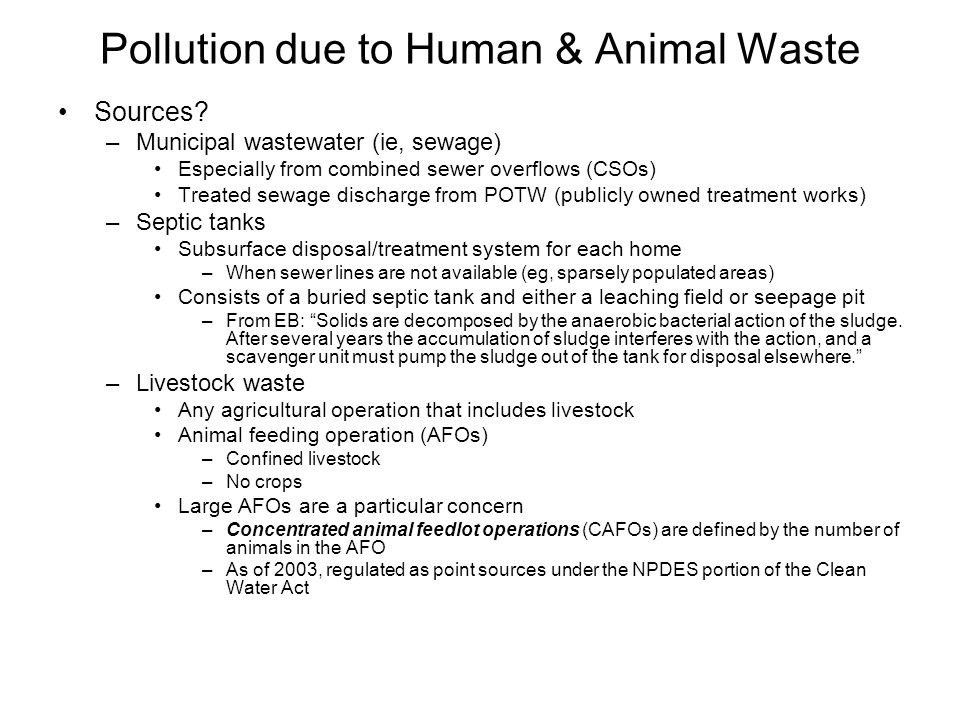Pollution due to Human & Animal Waste