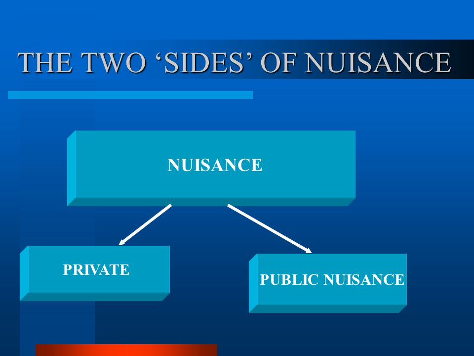 THE TWO 'SIDES' OF NUISANCE