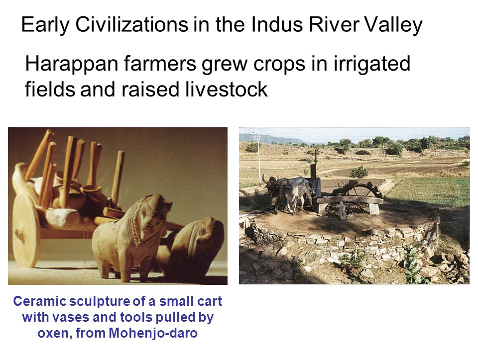 Early Civilizations in the Indus River Valley