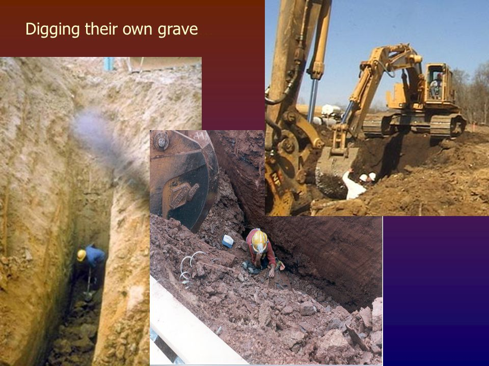 Digging their own grave…