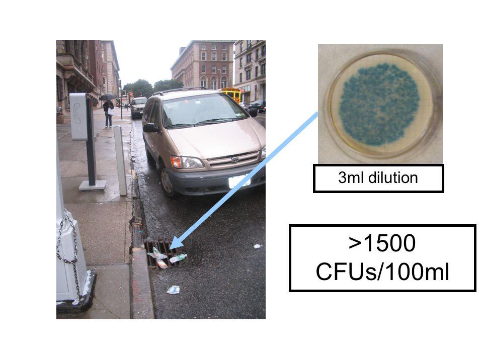 3ml dilution >1500 CFUs/100ml