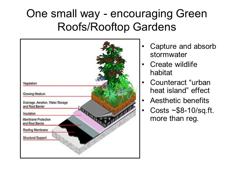 One small way - encouraging Green Roofs/Rooftop Gardens