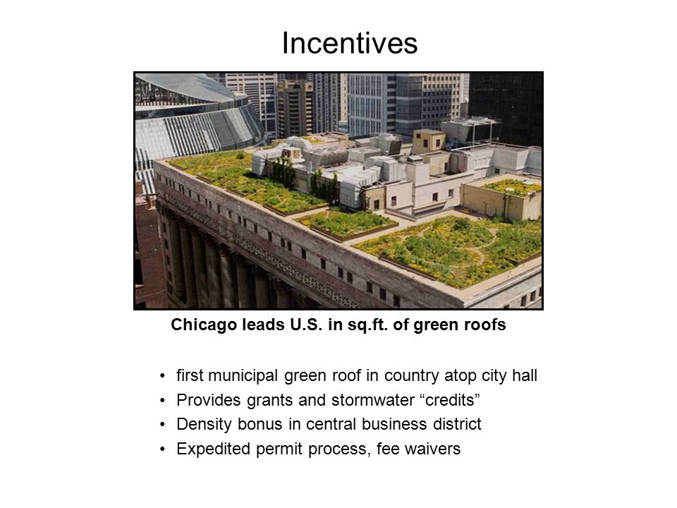 Incentives Chicago leads U.S. in sq.ft. of green roofs