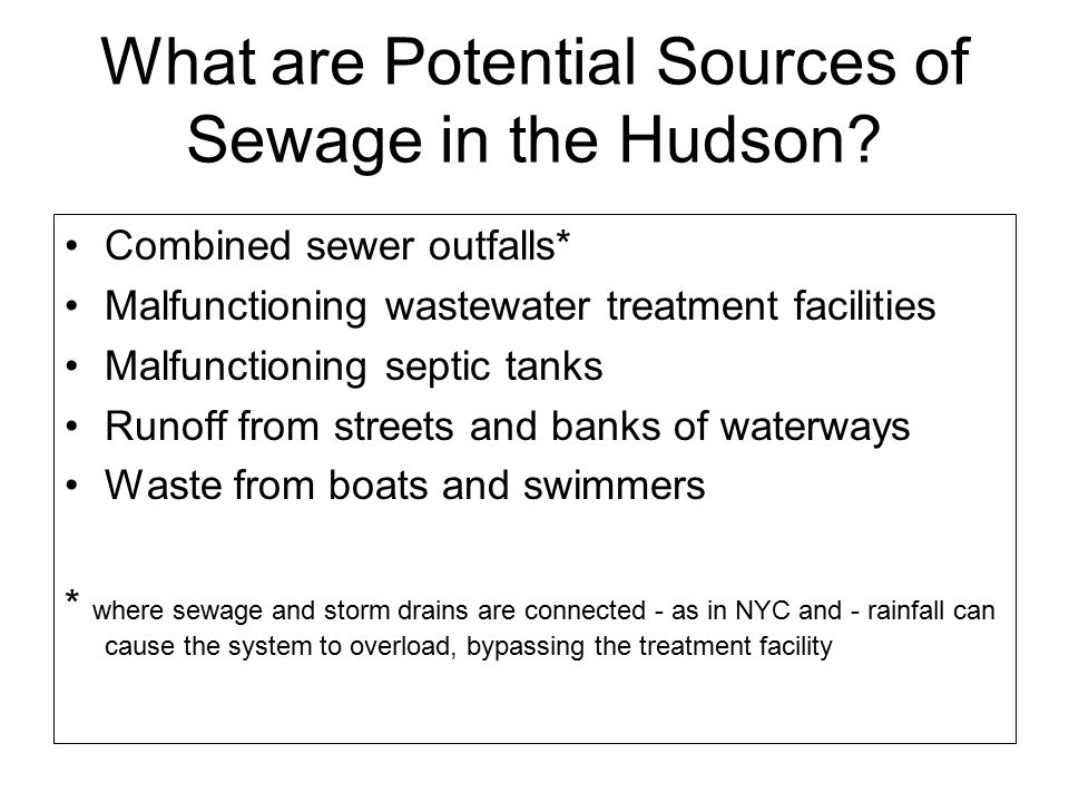 What are Potential Sources of Sewage in the Hudson