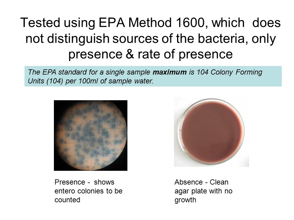 Tested using EPA Method 1600, which does not distinguish sources of the bacteria, only presence & rate of presence