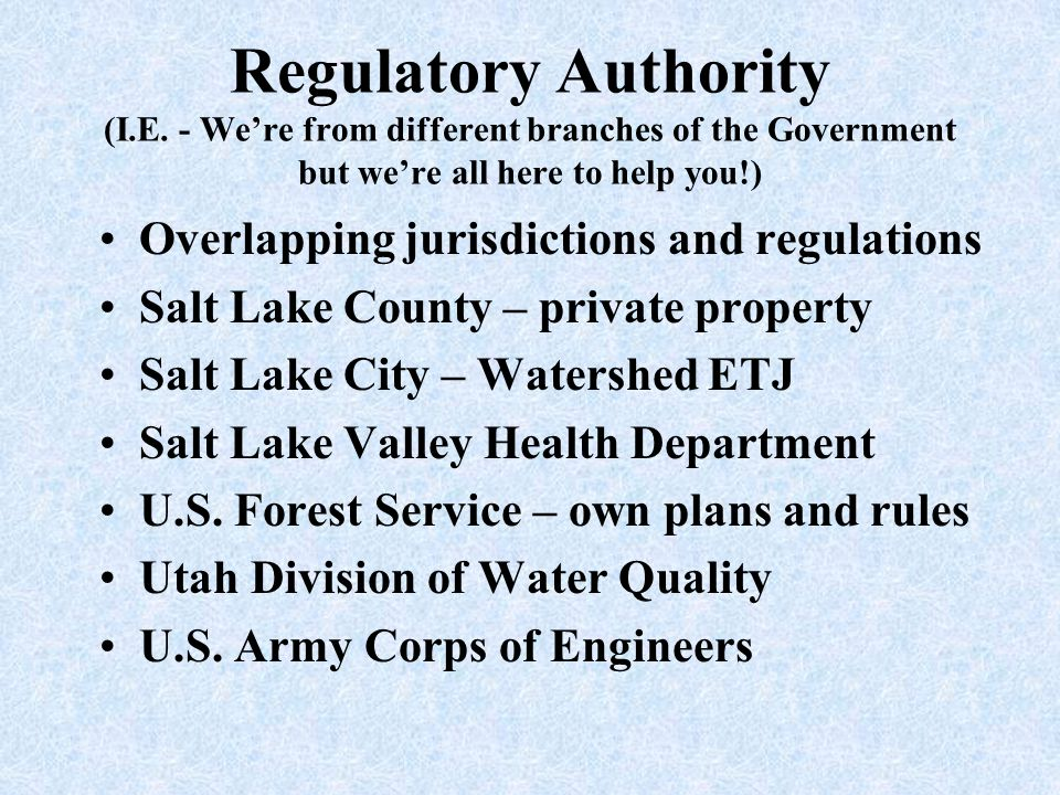 Regulatory Authority (I. E