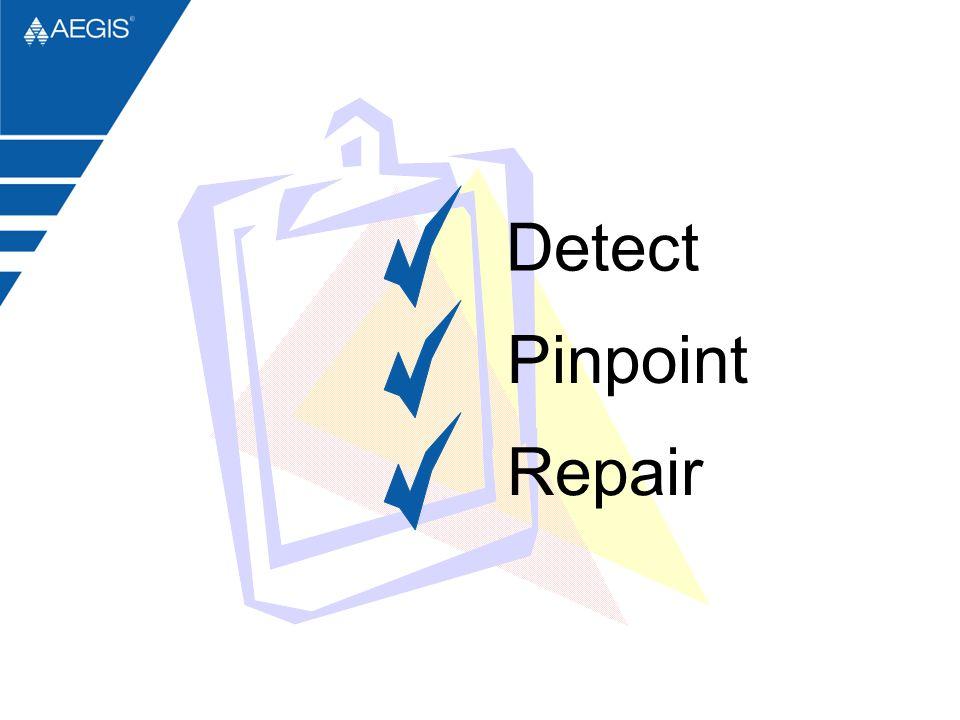Detect Pinpoint Repair