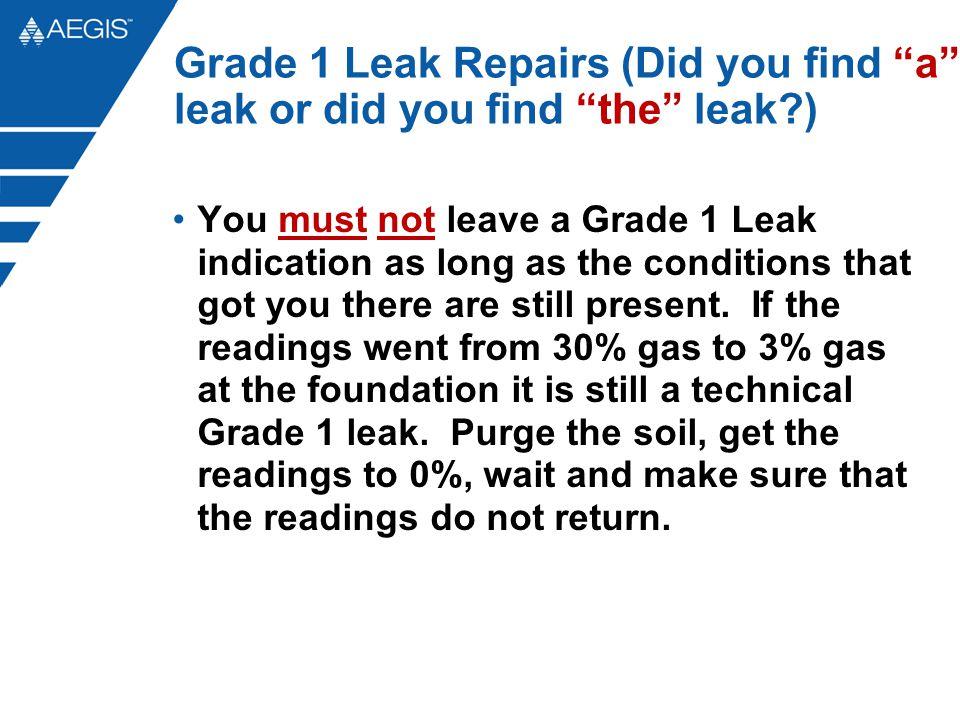 Grade 1 Leak Repairs (Did you find a leak or did you find the leak