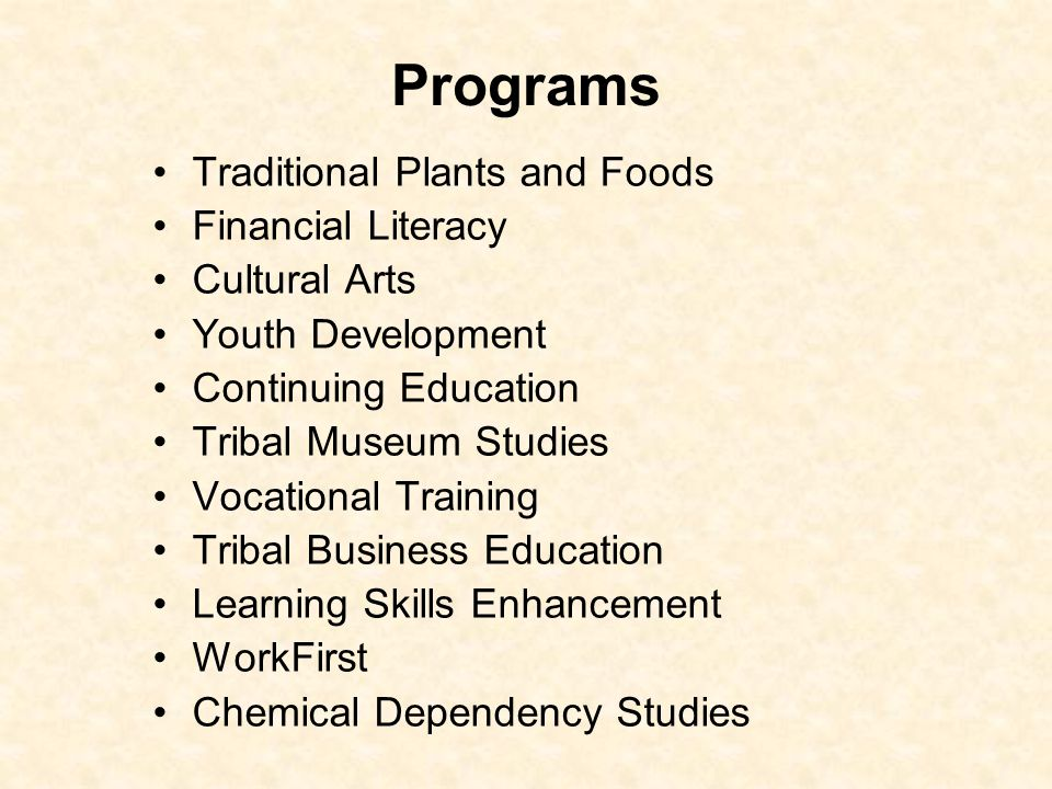 Programs Traditional Plants and Foods Financial Literacy Cultural Arts