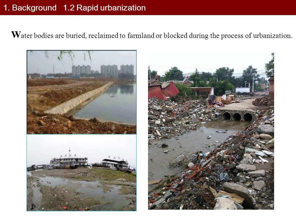 1. Background 1.2 Rapid urbanization