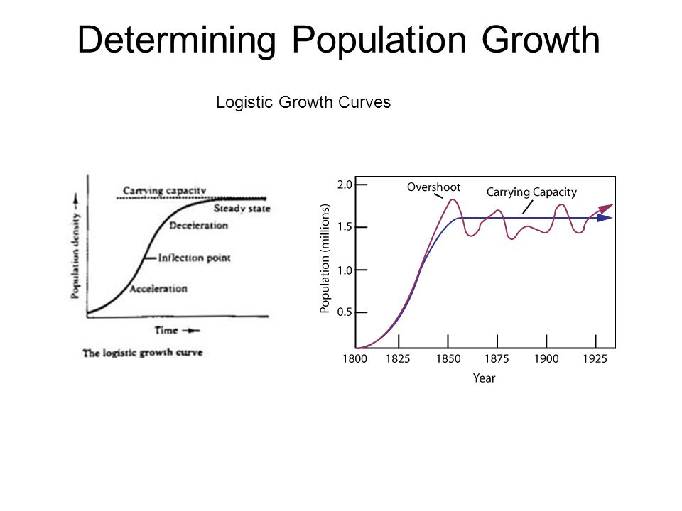 Determining Population Growth