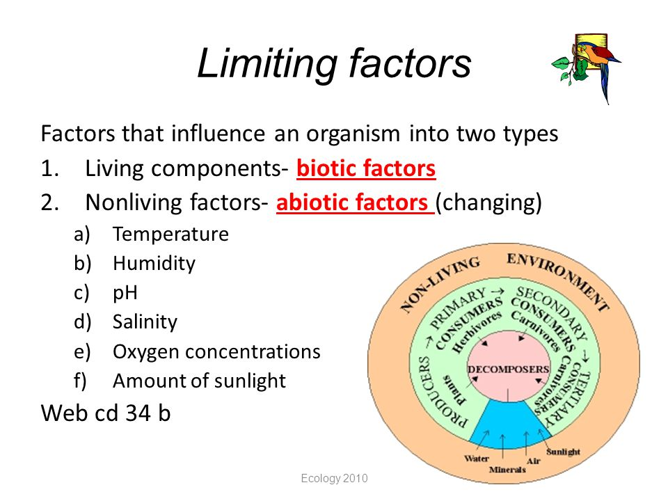 Limiting factors Factors that influence an organism into two types