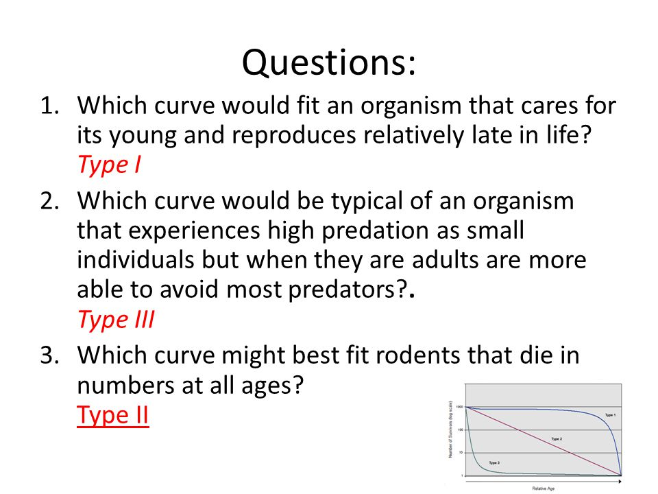 Questions: Which curve would fit an organism that cares for its young and reproduces relatively late in life Type I.