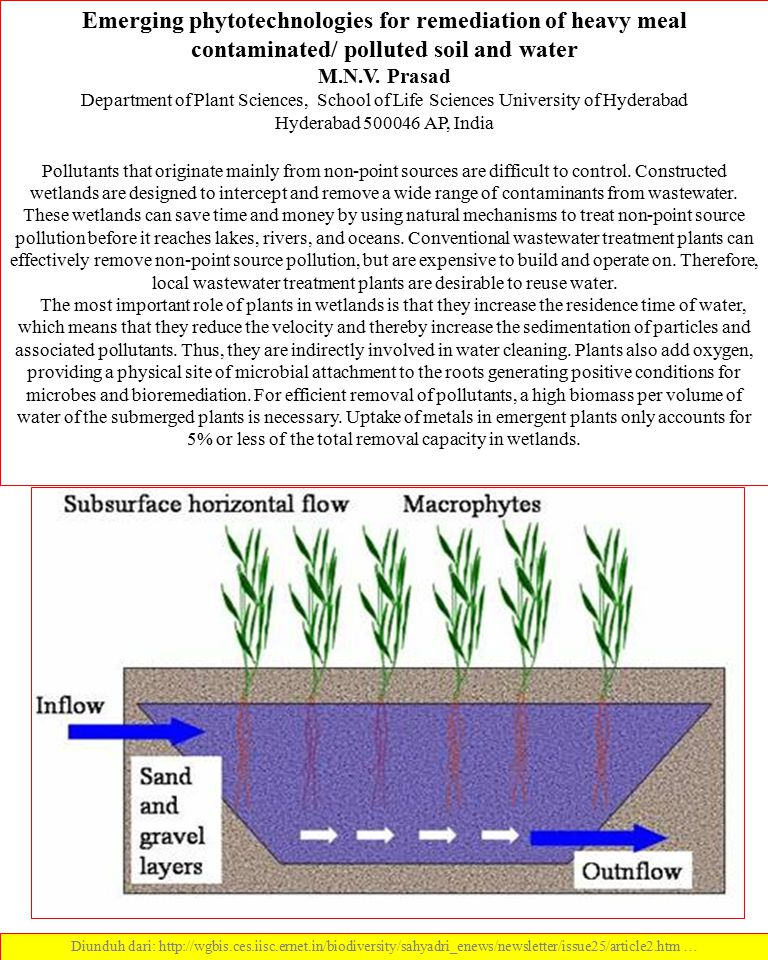 Emerging phytotechnologies for remediation of heavy meal contaminated/ polluted soil and water