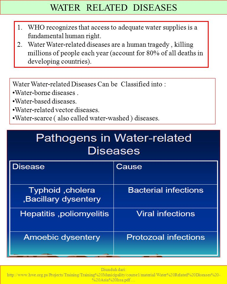 WATER RELATED DISEASES