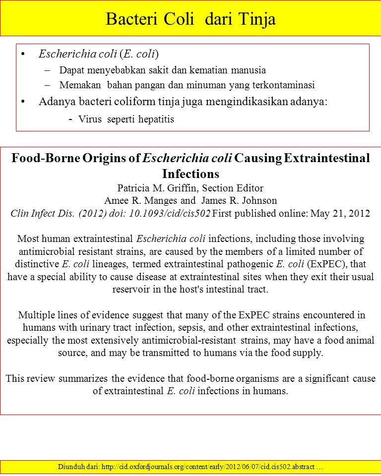 Bacteri Coli dari Tinja