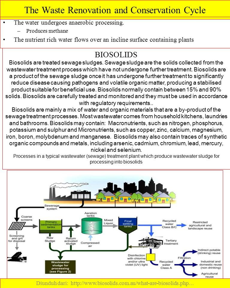 The Waste Renovation and Conservation Cycle