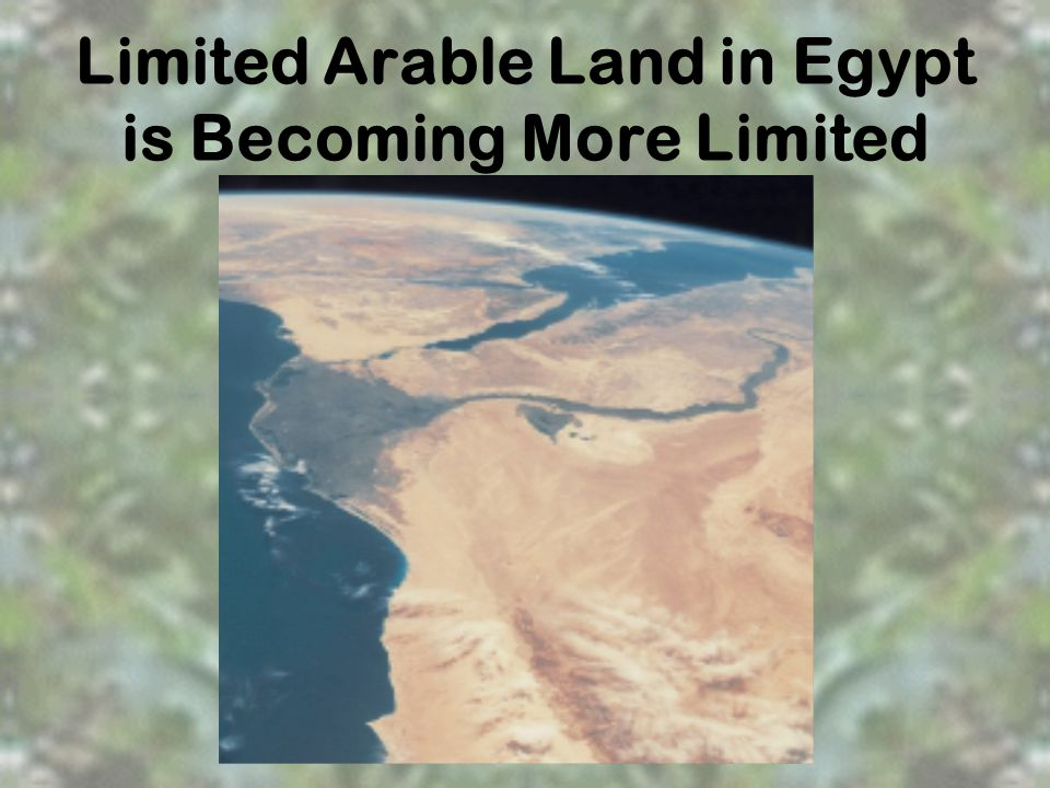 Limited Arable Land in Egypt is Becoming More Limited
